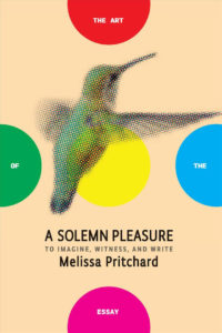A Solemn Pleasure to Imagine, Witness and Write by Melissa Pritchard